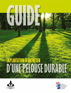 Implantation d ela pelouse durable